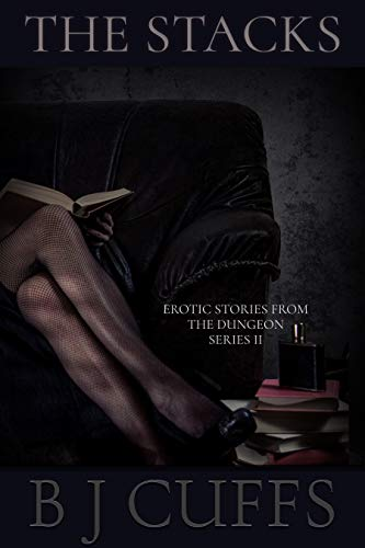 The Stacks: An Erotic BDSM Story (Erotic Stories From The Dungeon Series II Book 1)