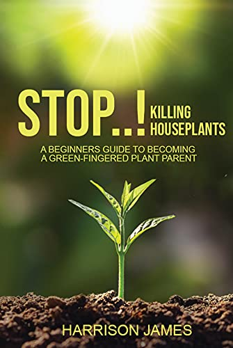 Stop Killing Houseplants: A beginners guide to becoming a green-fingered plant parent